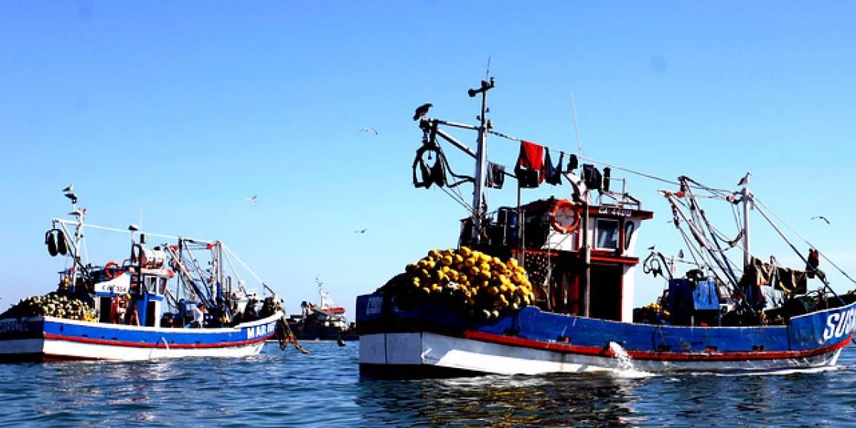 Bachelet anuncia modificación a la Ley de Pesca sin dar mayores detalles