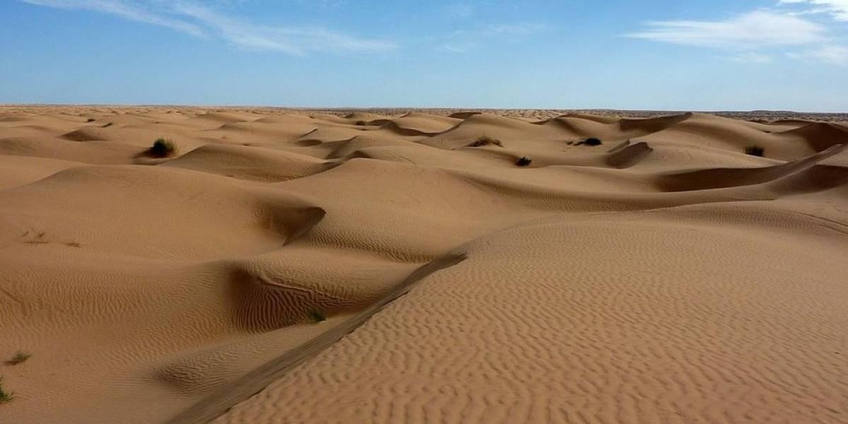 Fallecen más de 40 migrantes de sed en cruce del desierto Sahara
