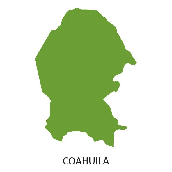 Coahuila Elecciones 2017