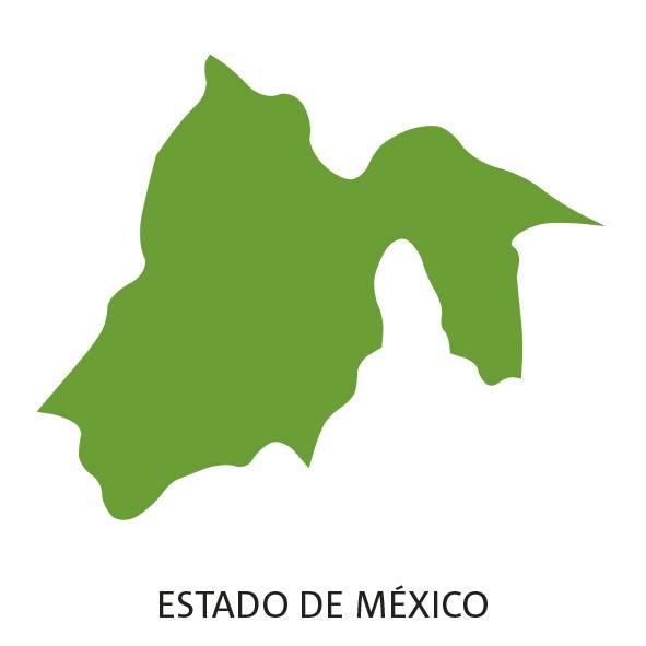 Estado de México Elecciones 2017