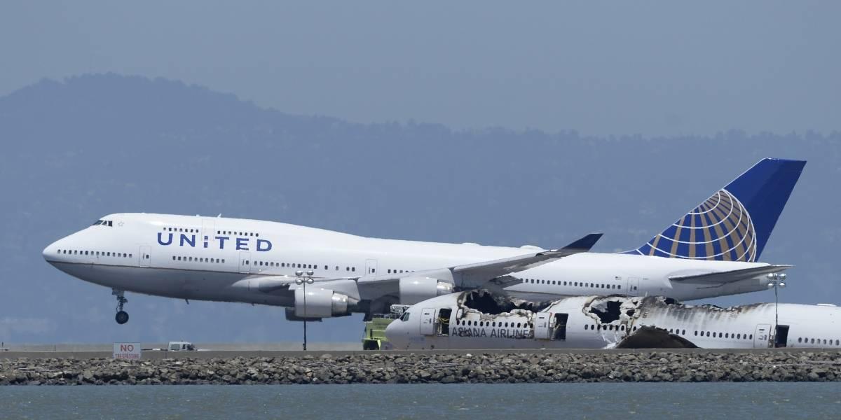 United no transportará mascotas en sus vuelos