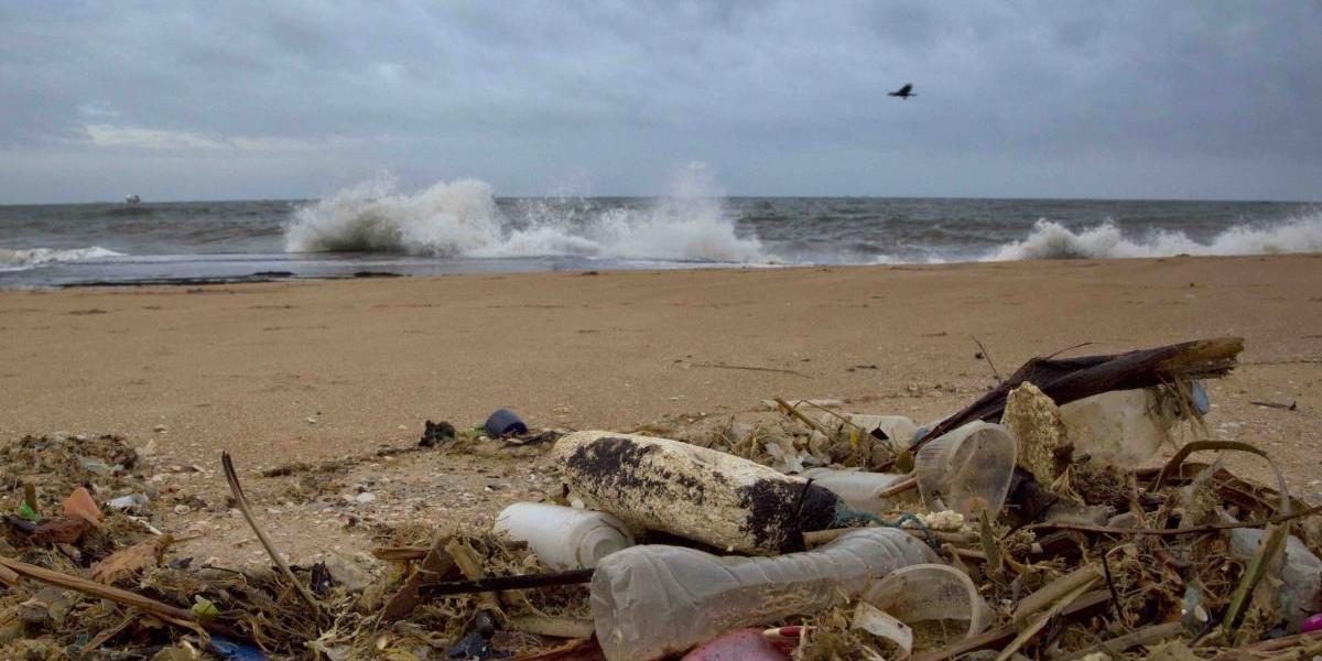 Para 2050 podría haber más plástico que peces en los océanos