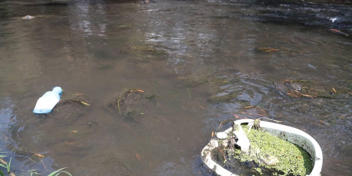 Autoridades recolectan más de 10 toneladas de basura del río Zapotlanejo, en Jalisco