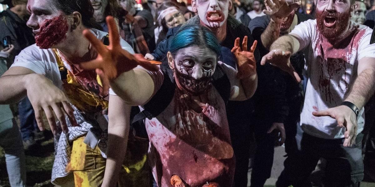 Una nueva idea de película: autos y zombies