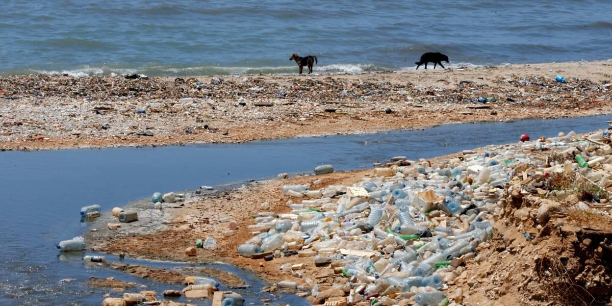 Cerca de 80% dos resíduos encontrados nos oceanos têm origem nas cidades