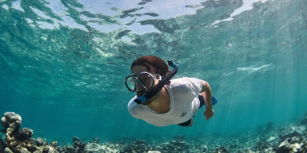 Corona, Parley for the Oceans y Diego Luna unen fuerzas para proteger los océanos