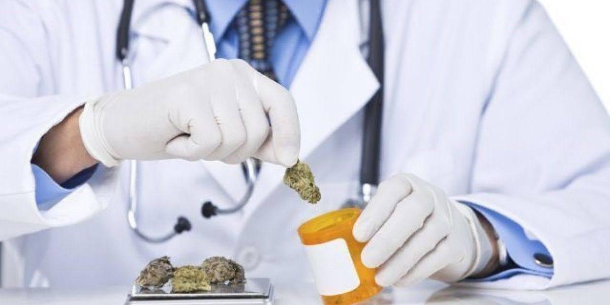 Vigilante la Asociación de Cannabis Medicinal ante trámite legislativo del Proyecto 340