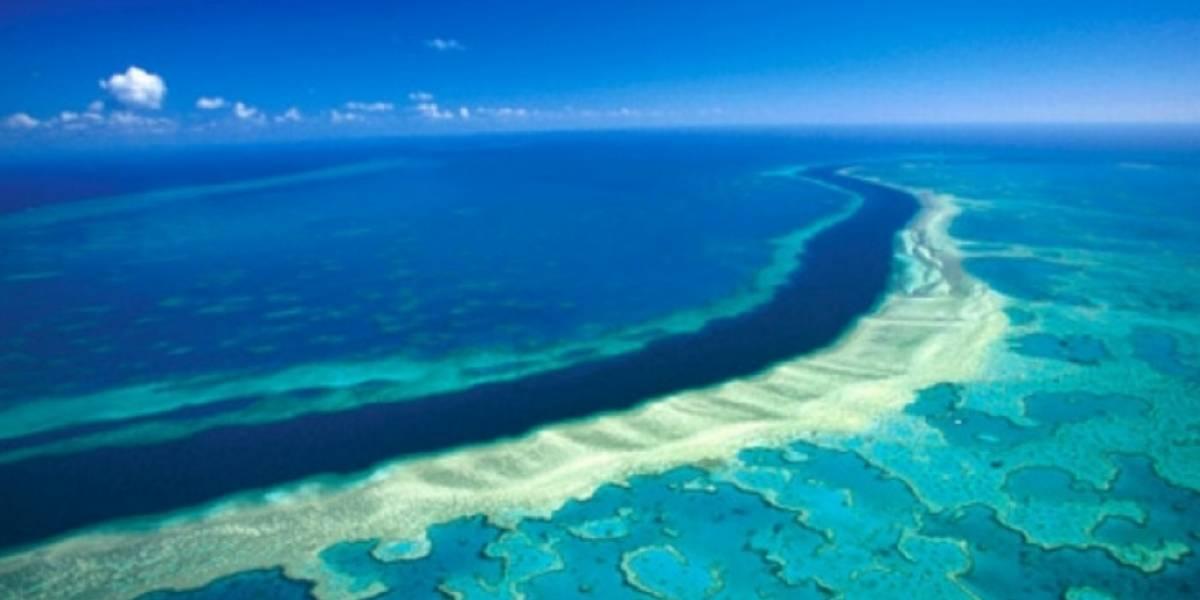 Océanos, pilares de la vida que se encuentran en riesgo