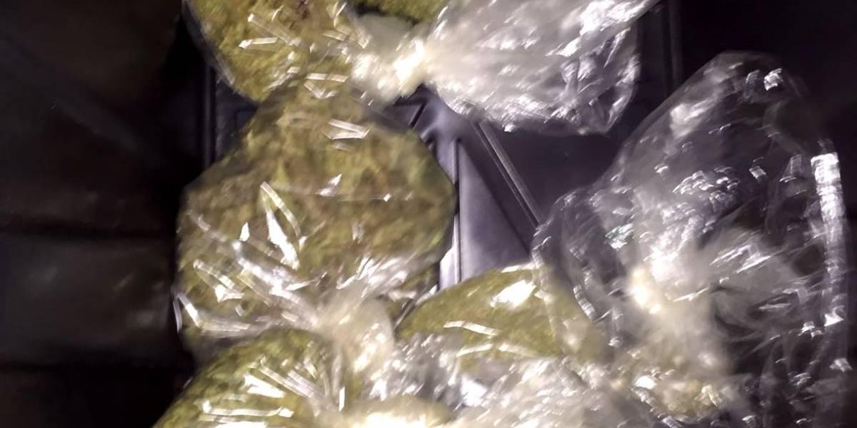 Incautan gran cantidad de marihuana en residencia de Moca