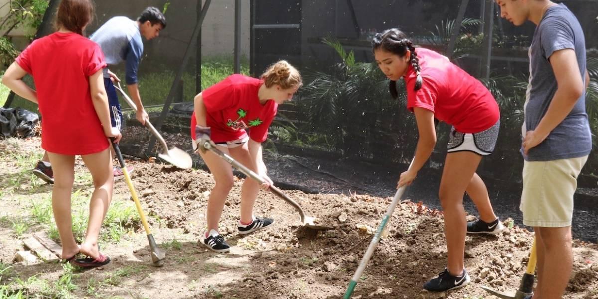 Estudiantes boricuas y jóvenes de Florida realizan labores de aportación social