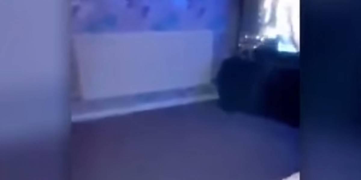VIDEO. Graba el fantasma de un niño y recibe una extraña revelación
