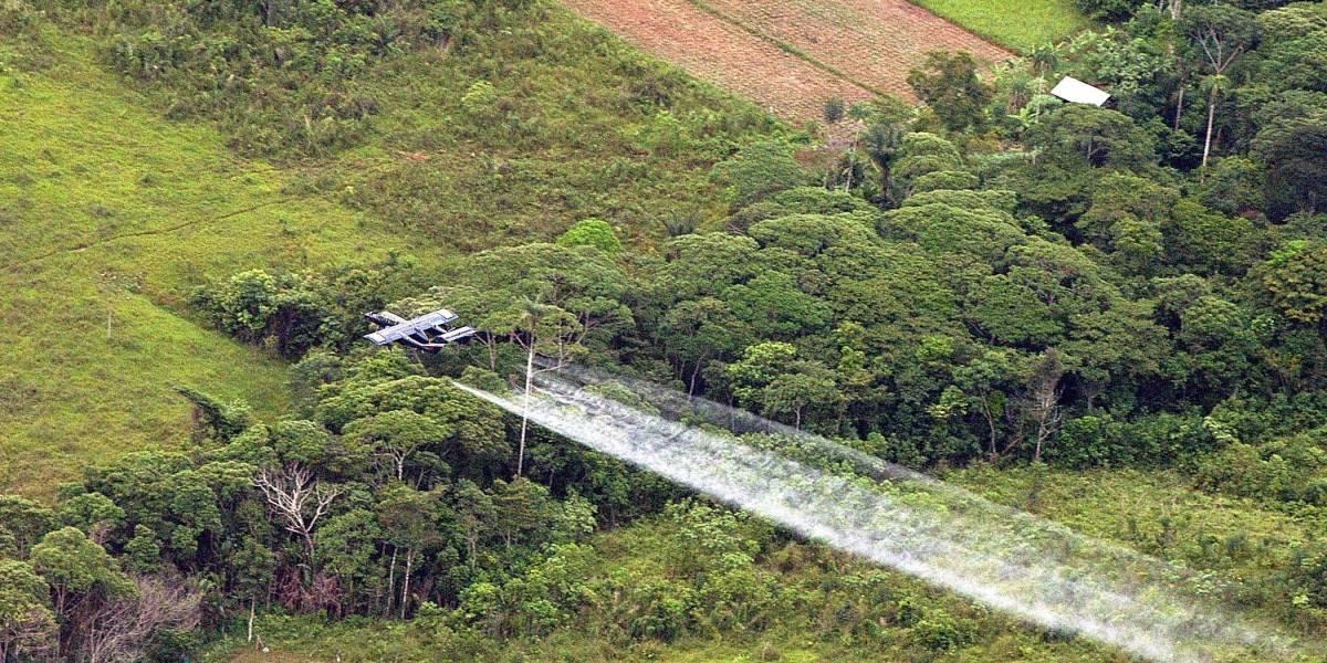 EE.UU. le pide a Colombia retomar la aspersión aérea para erradicar la coca