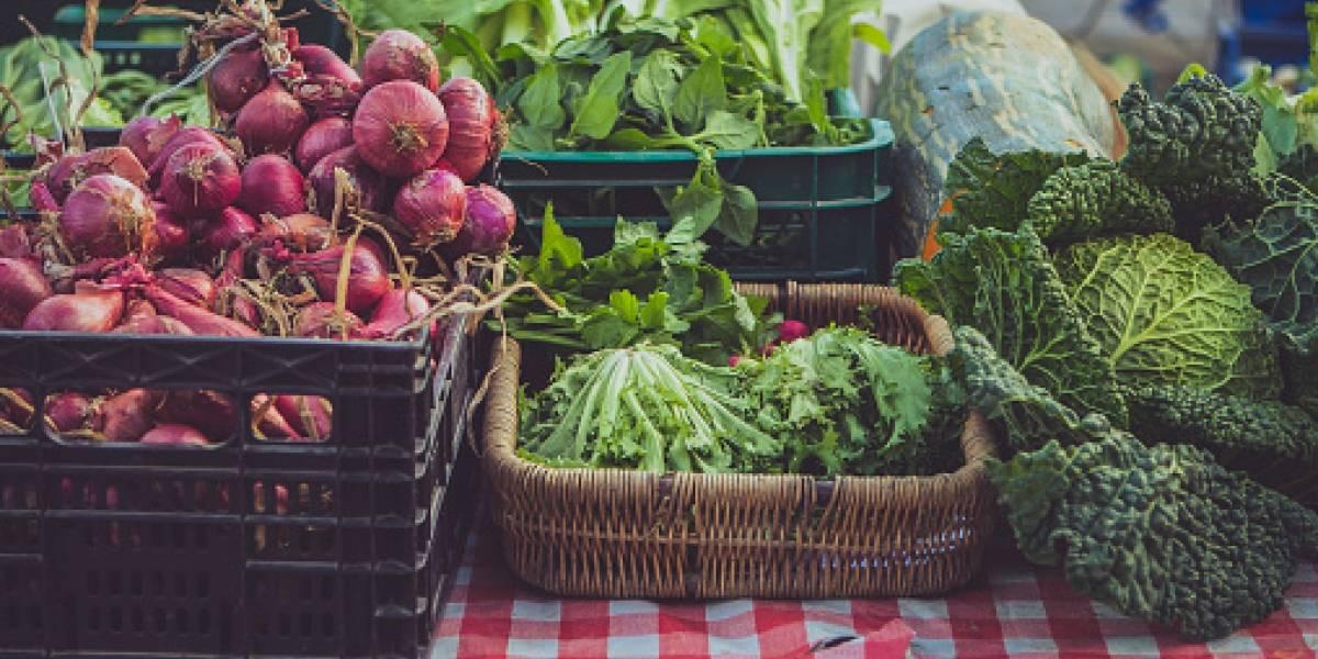 Campesinos venderán sus productos en el Mercado Ecológico de Nuestra Tierra