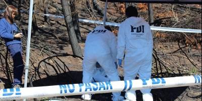 Encuentran cuerpo descuartizado de empresario desaparecido en Pucón