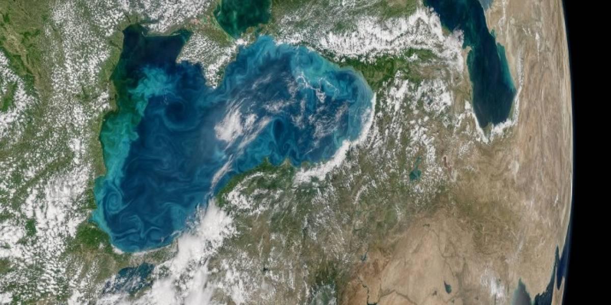 """""""Milanesat"""": el nuevo satélite argentino puesto en órbita cuyo nombre fue escogido en redes sociales"""