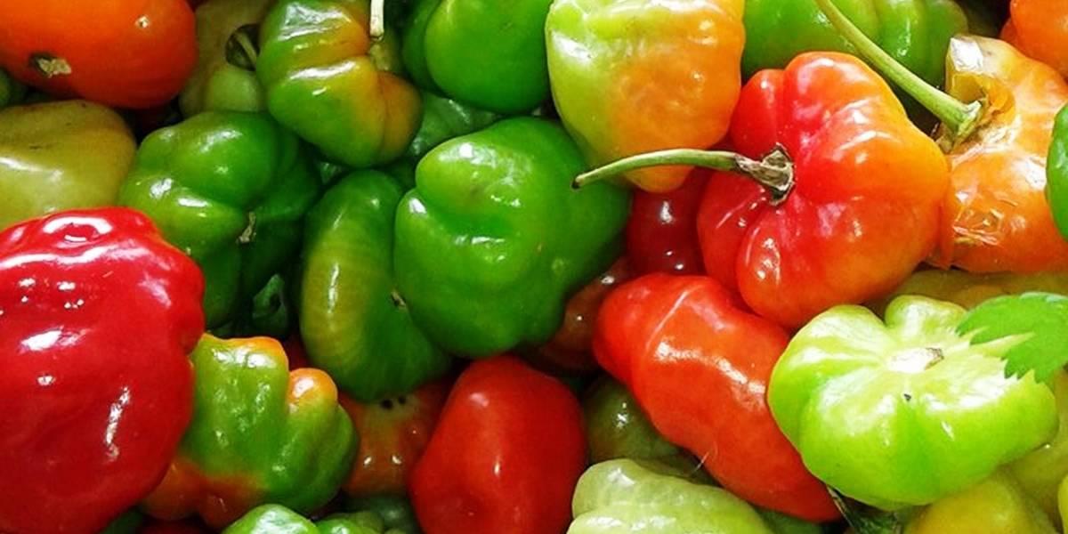 Variada oferta en mercado urbano de Ceiba
