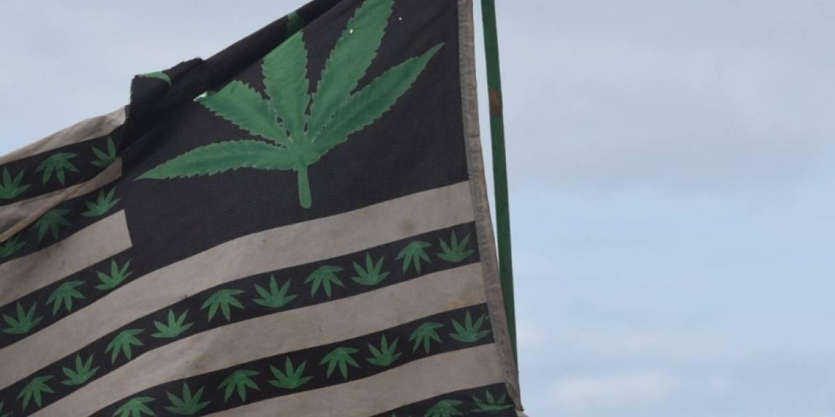 Toman auge clínicas de marihuana medicinal en la isla