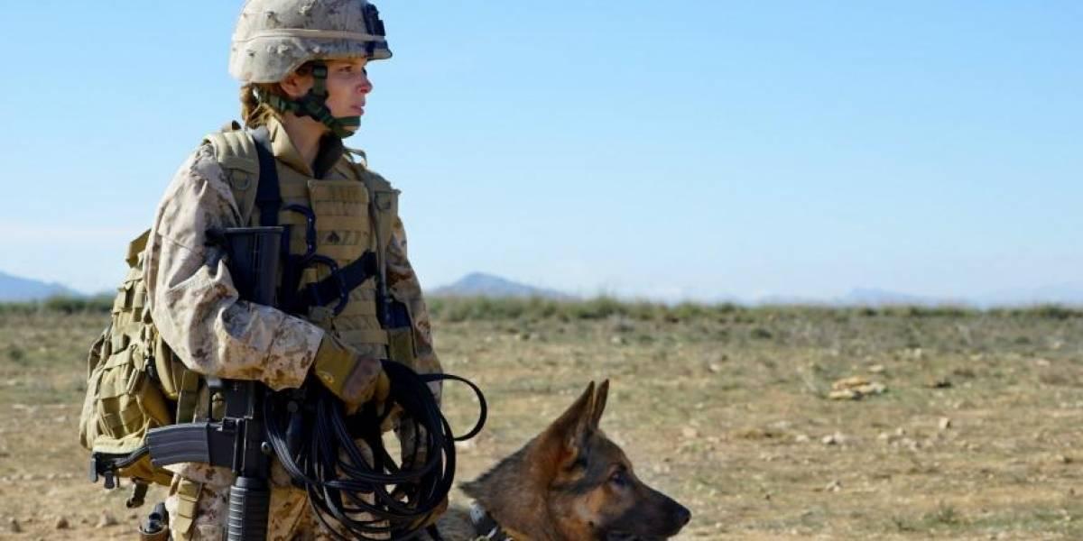 Kate Mara es totalmente genial actuando con perros