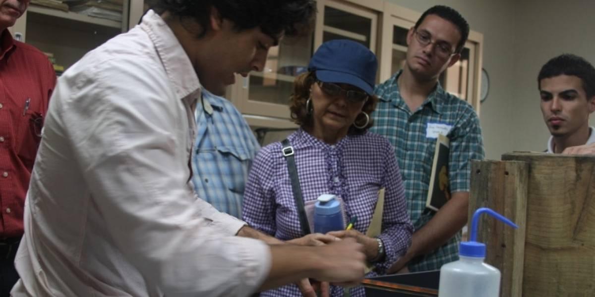 Desarrollan programa de apoyo para que agricultores comiencen con industria del cacao