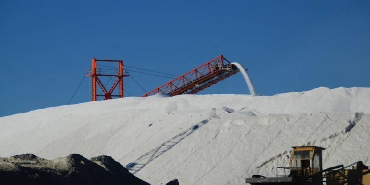 Inhabilitan por cinco años a servidor público de exportadora de sal