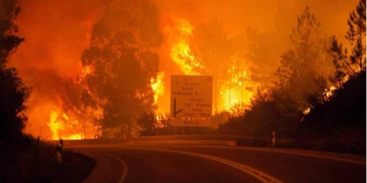 Al menos 19 muertos y varios heridos en un incendio forestal en Portugal