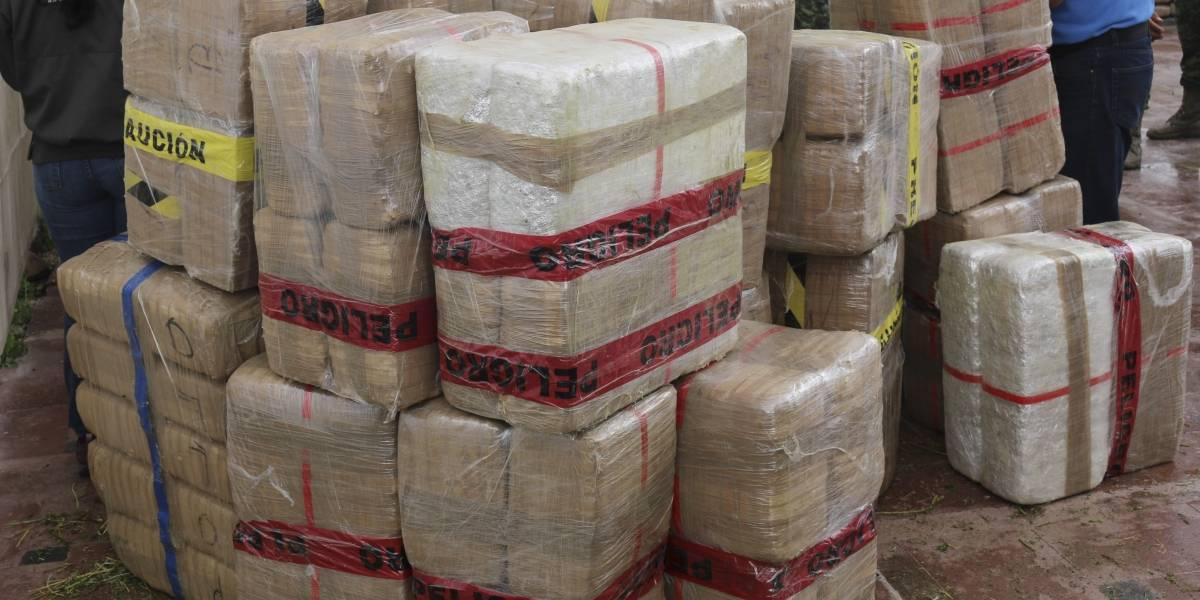 Decomisan tres toneladas de marihuana en Nuevo León