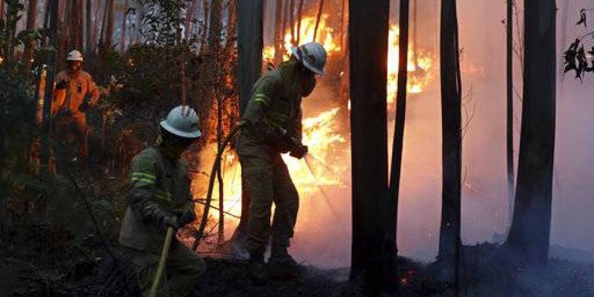 Mueren 62 personas en incendio