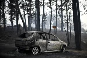 incendioportugal14.jpg