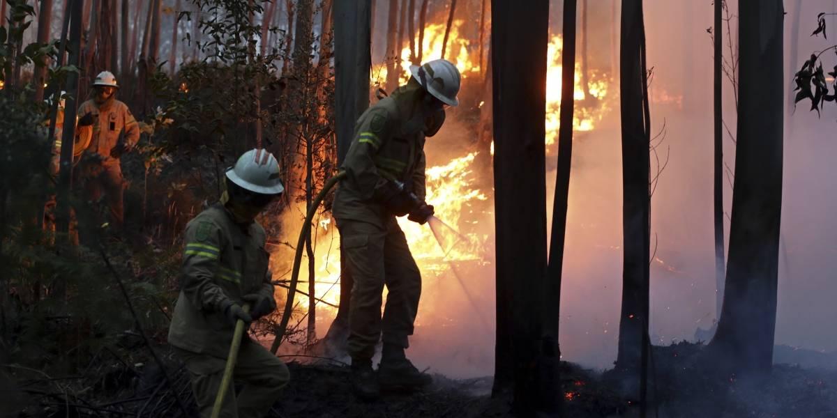Incendios forestales en Portugal dejan 57 muertos