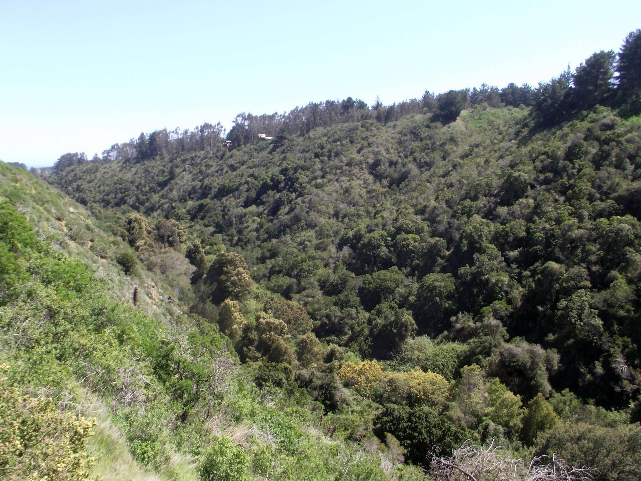 Santuario de la Naturaleza