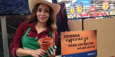 Publicando una fotografía puedes ayudar a reforestar Guatemala