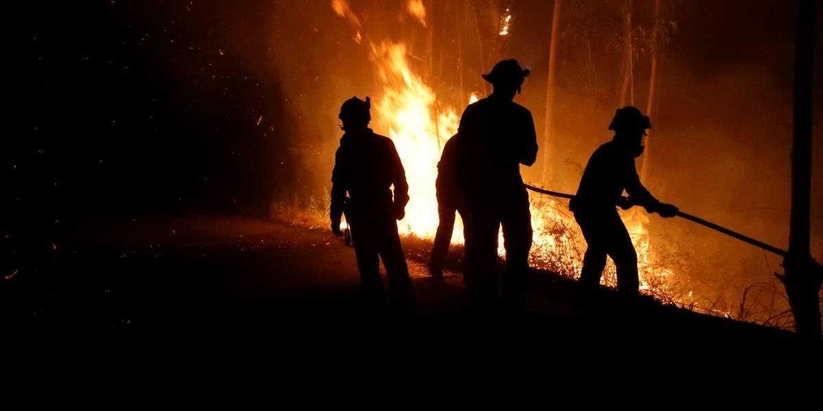 'Tsunamis' de fogo consumiam tudo em segundos, diz testemunha em Portugal
