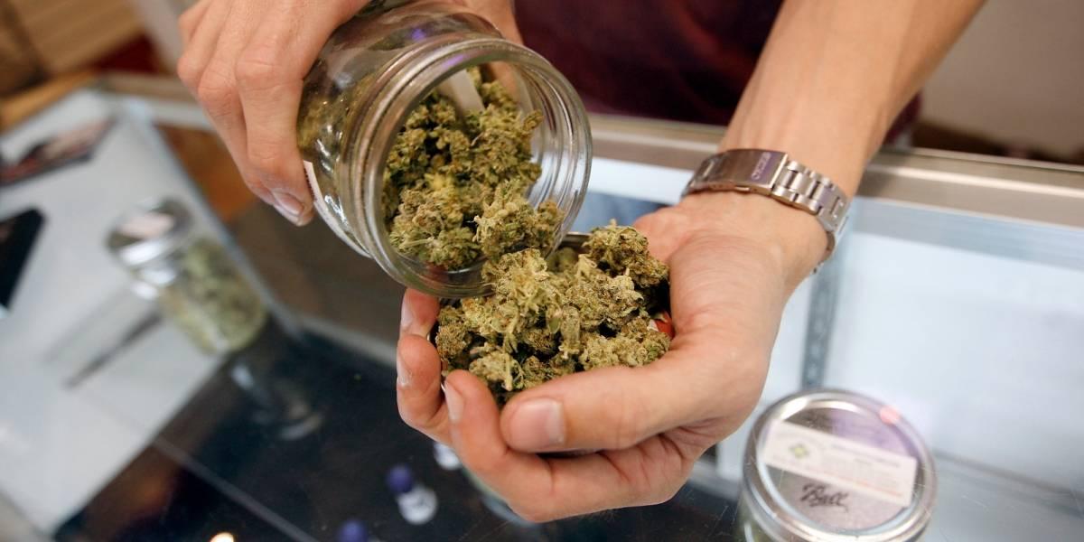 Legalizan el uso médico y científico de la marihuana en México