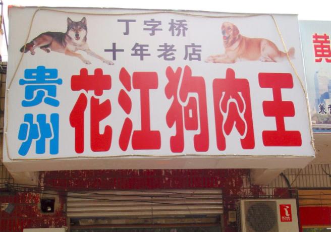 Festival de carne de perro se llevó a cabo en China a pesar de la prohibición
