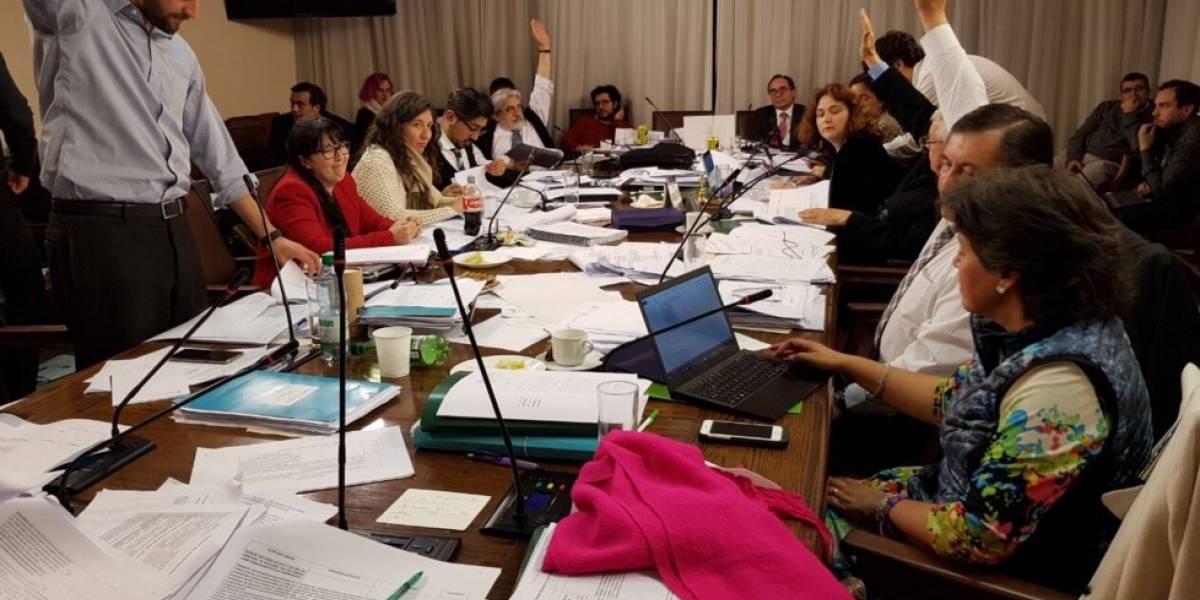 Tras toda la noche discutiendo: Comisión de Educación despacha la reforma de Educación Superior