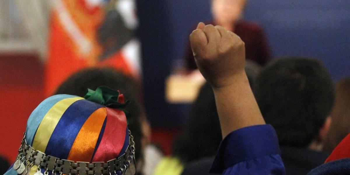 """Perdón de Bachelet al pueblo mapuche: ONU valora y califica de """"histórico"""" el hecho"""