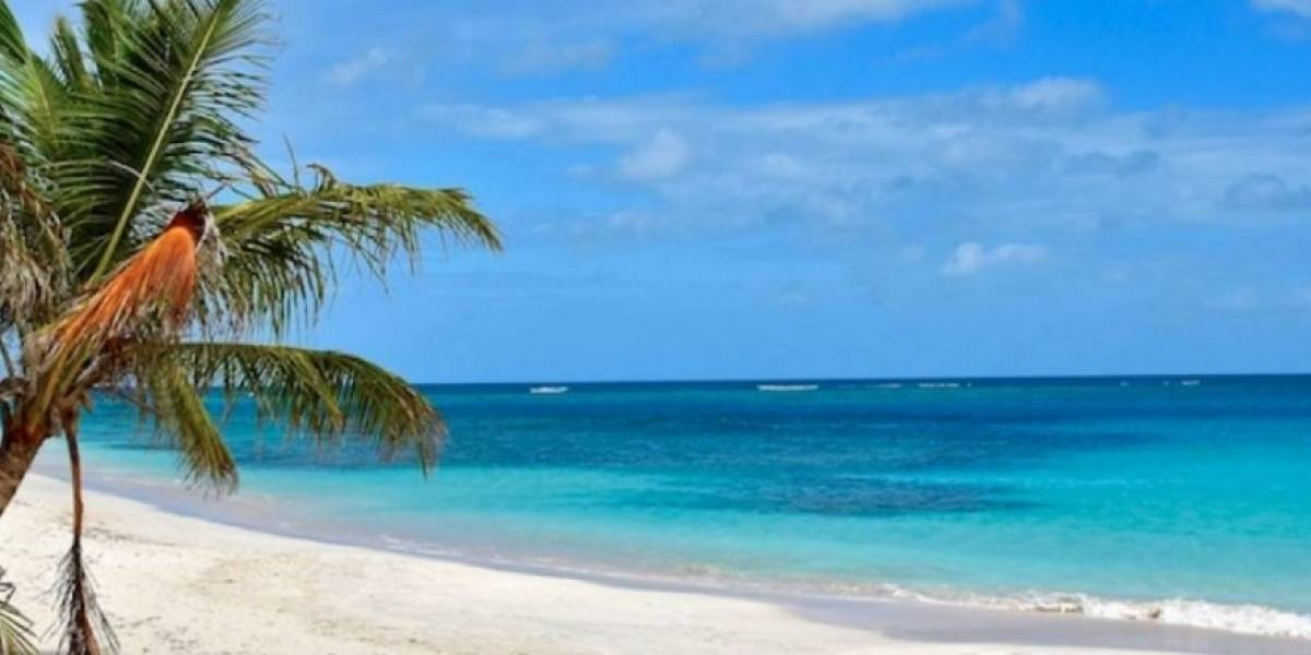 Estas son las cuatro playas contaminadas en la isla