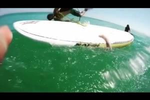 Viral: critican a surfista que intenta ayudar a calamar