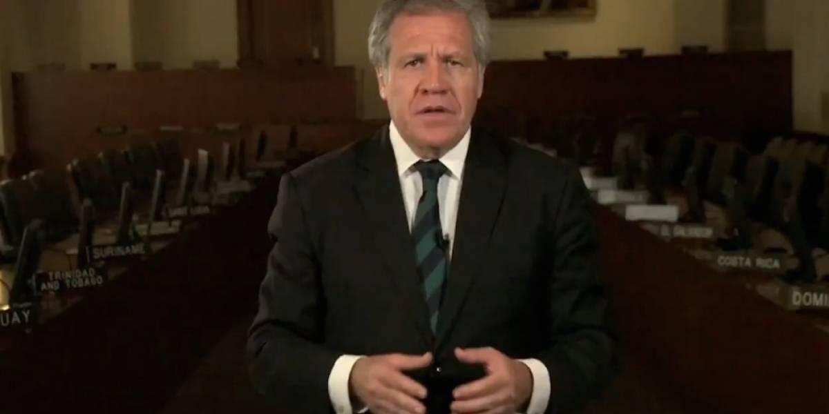 Renunciaré a la OEA cuando haya libertad en Venezuela: Almagro