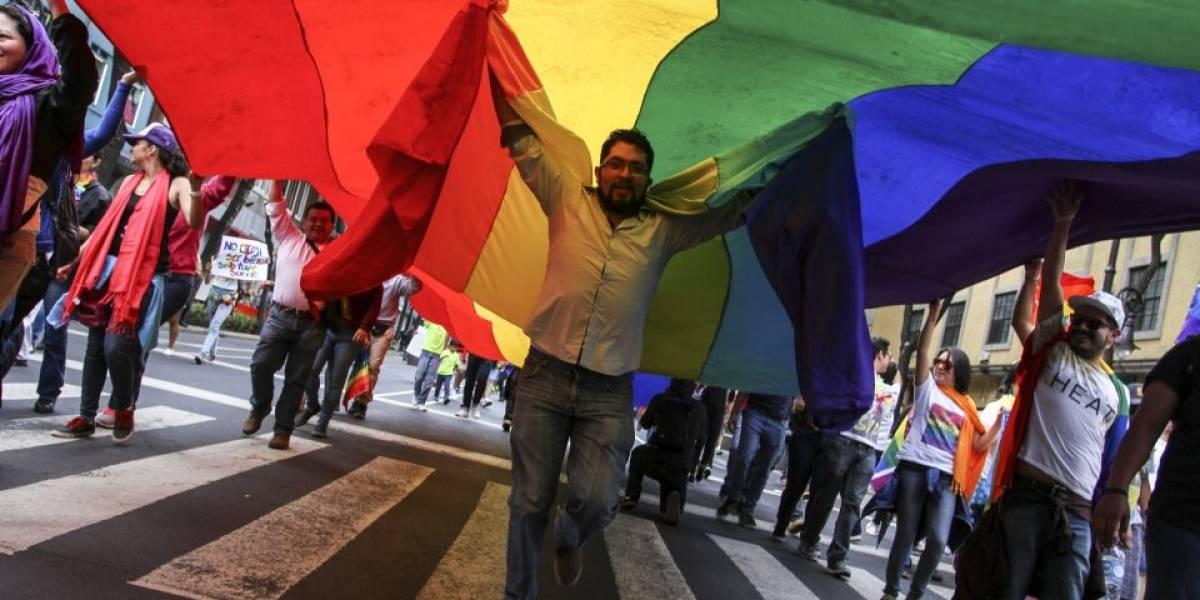 Comisión Nacional de Derechos Humanos acompañará marcha del orgullo gay