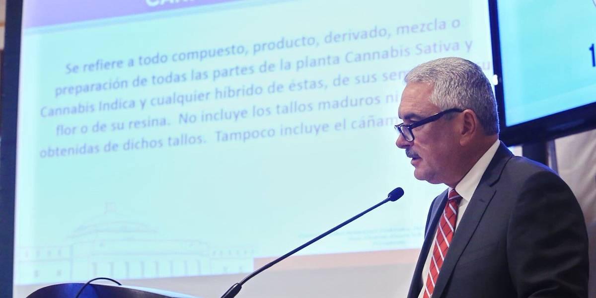 Senado da paso a regulación del cannabis medicinal