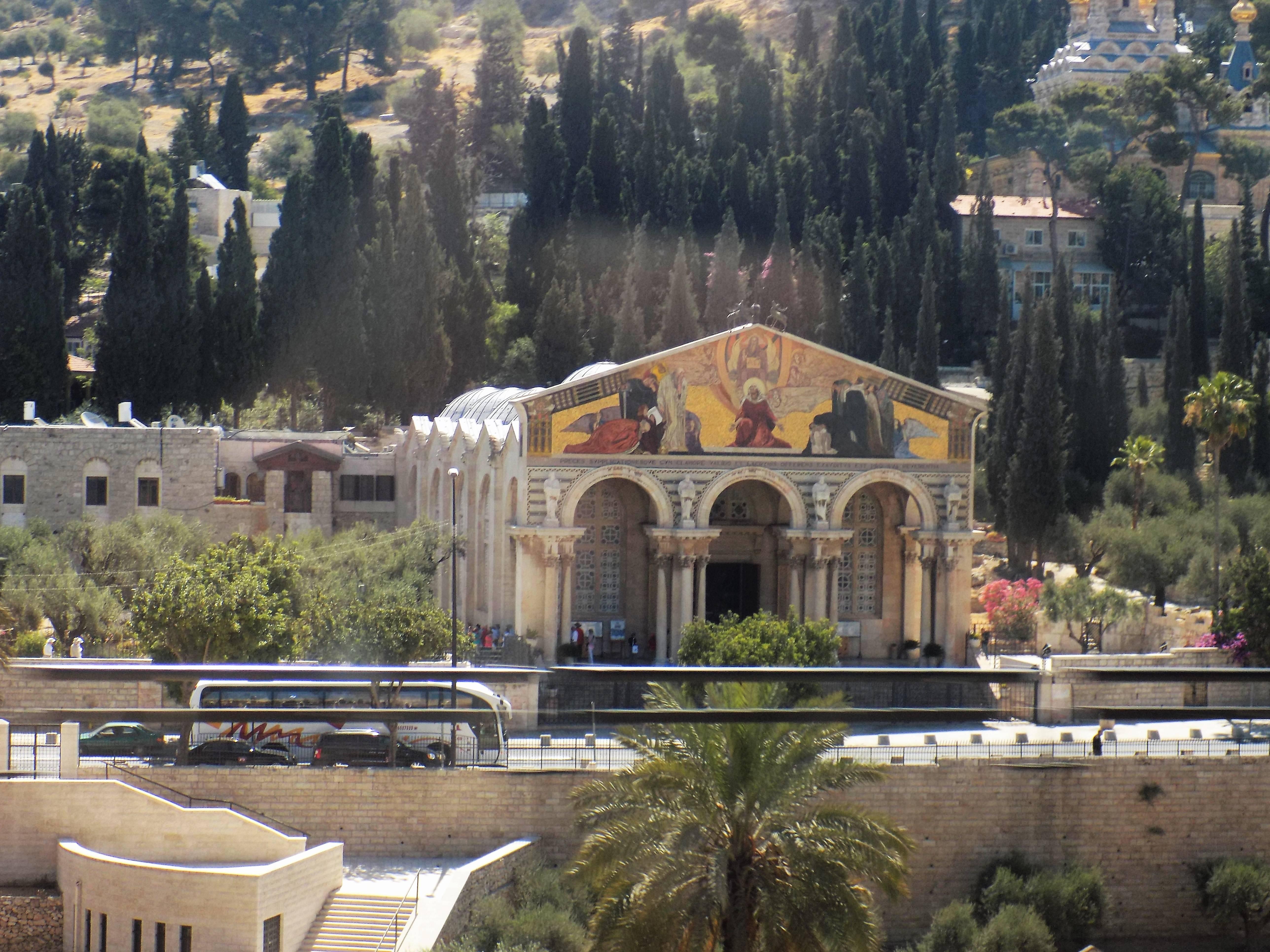 Jardín de Getsemaní. De acuerdo al Nuevo Testamento, aquí fue entregado Jesucristo Foto: Miguel Velázquez