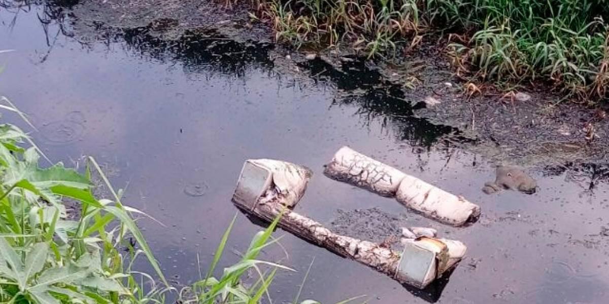 Morelia genera mil 200 toneladas de basura al día