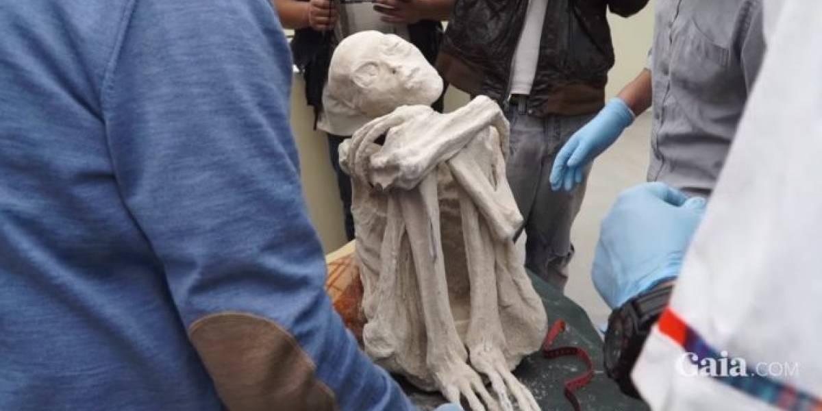 """Ojos grandes, tres dedos y un extraño cráneo: así es la """"momia extraterrestre"""" que desconcierta a Perú"""