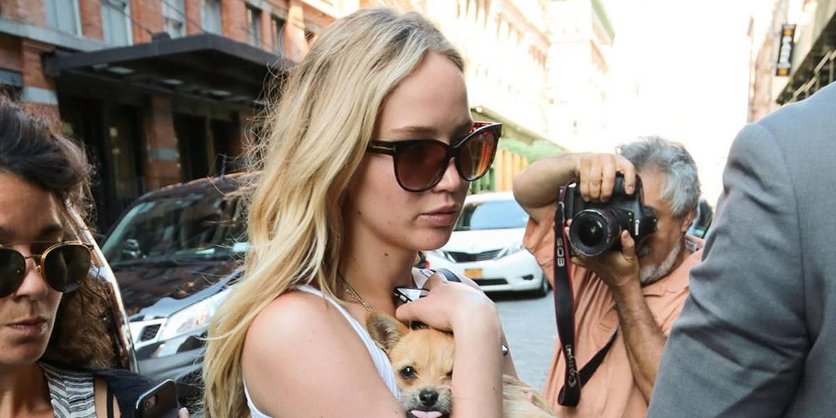 """""""No toques a mi perro, perdedor"""": El insulto de Jennifer Lawrence a un periodista"""
