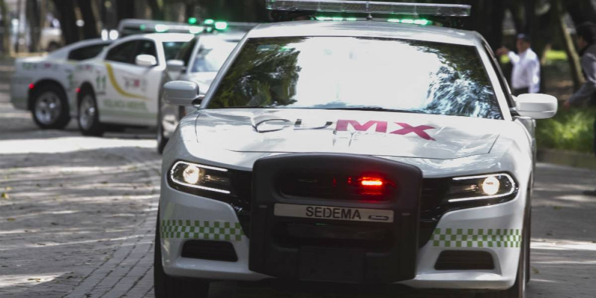Autorizan a ecopatrullas cobrar multas en la calle; ya no retirarán placas