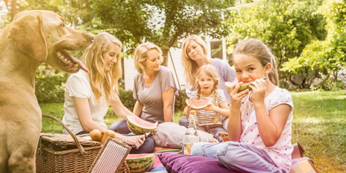 Lo invitamos a un pícnic para toda la familia, ¡incluidas las mascotas!