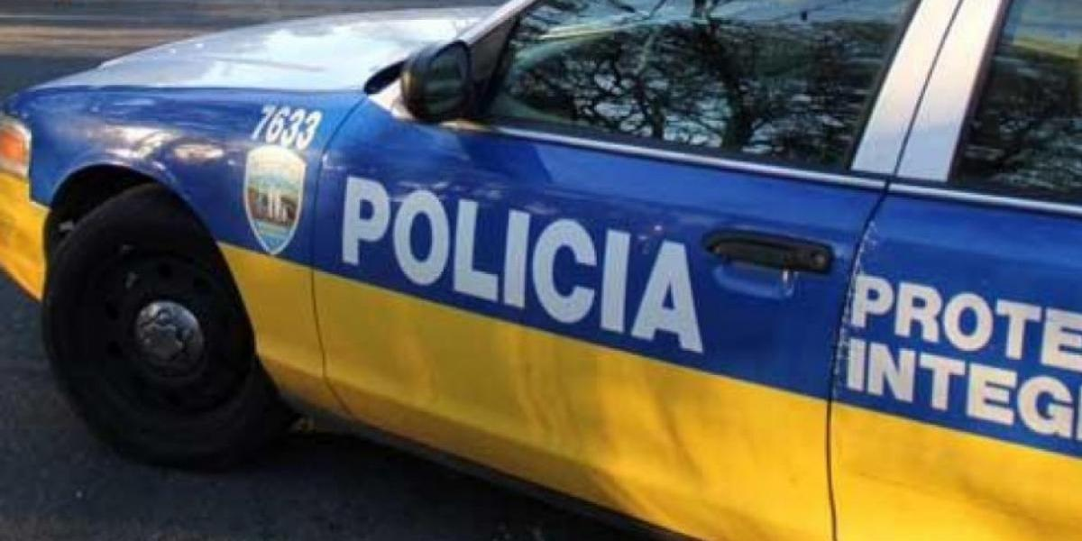 Fallece hombre tras ser aplastado por un árbol en Ciales