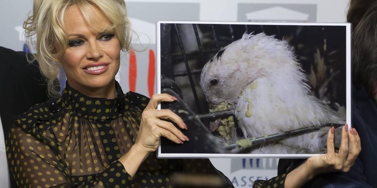 Pamela Anderson llega a los 50 años