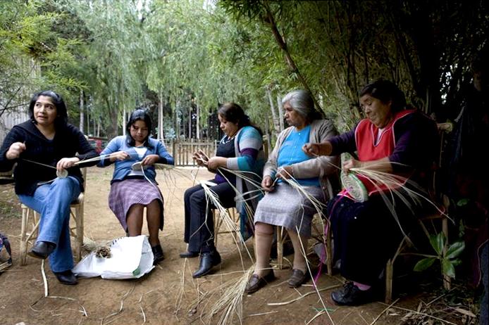 Cmpc y mapuches celebran el We Tripantu